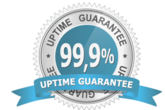guaranteed server uptime